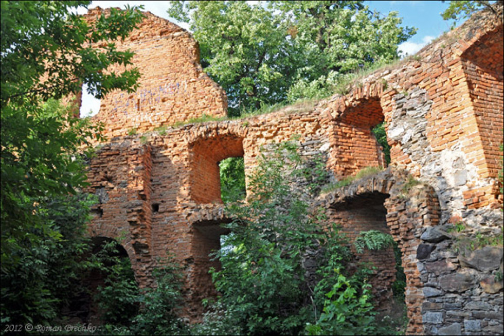 Руїни палацу поросли молодими деревами
