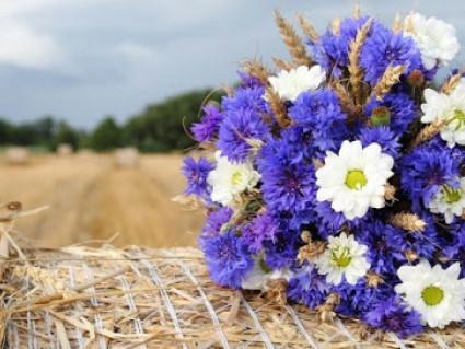 Корецький календар: що святкуємо, кого вітаємо 7 вересня