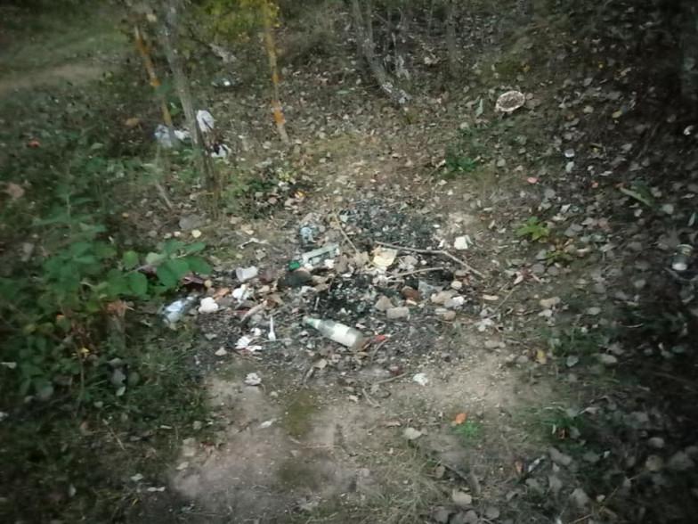 Сміття у Корецькому лісі