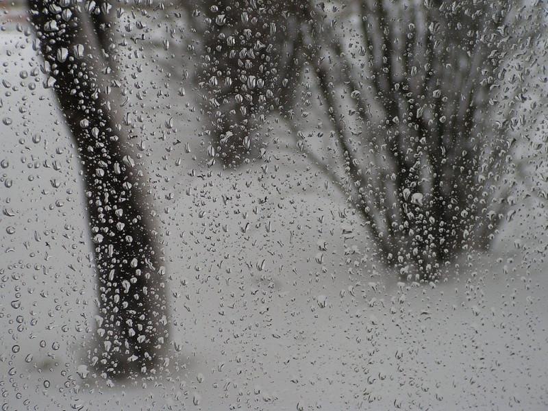 Весь день у Корці буде хмарним