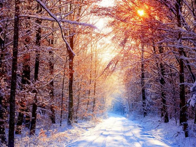 У Корці буде триматися морозна погода